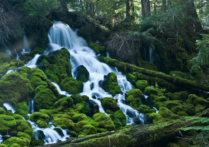 Clearwater Falls, Oregon