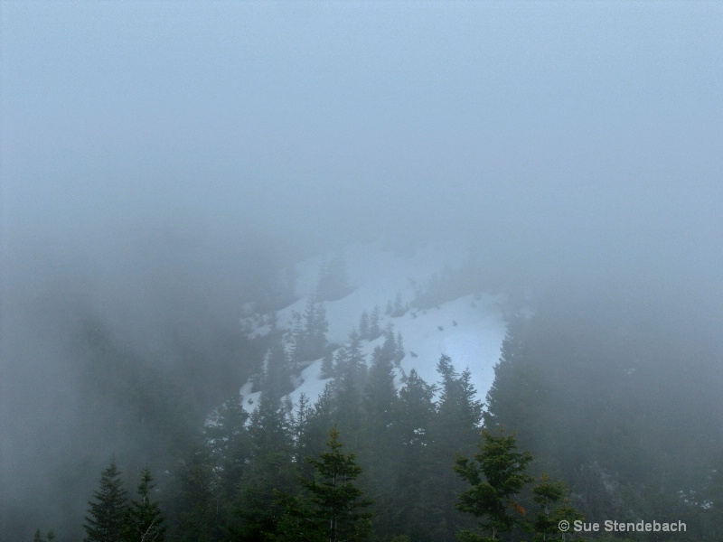 Descending into Fog, Wagner Butte Trail, OR