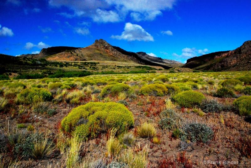 Patagonian Color