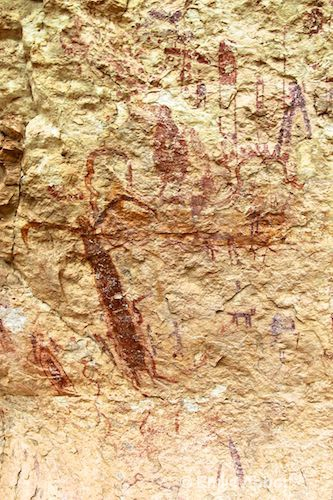 Portion of the panel of pictographs