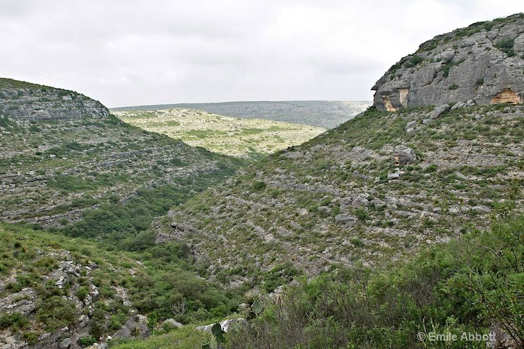 View from top of the canyon