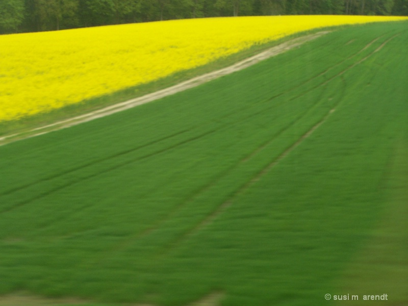 Fields from the Train