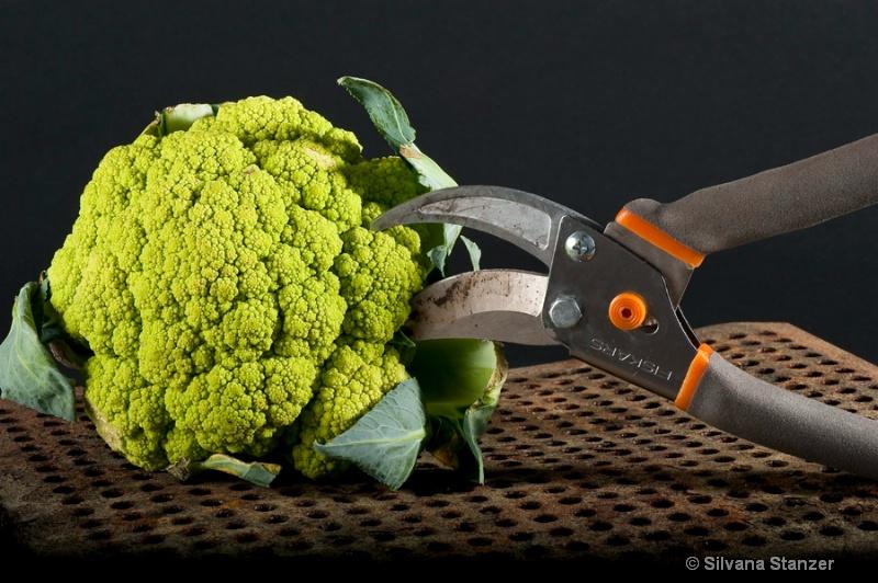 Healthy Tools Garden Scissor
