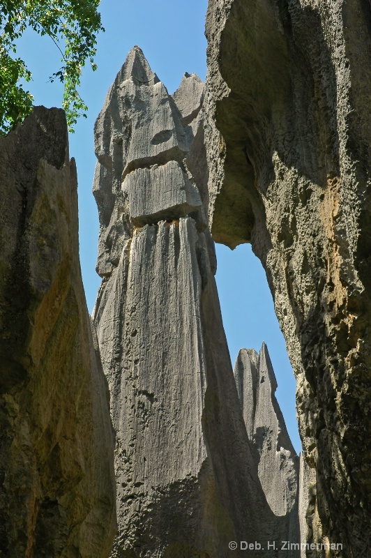 Karst spires soar at the Stone Forest