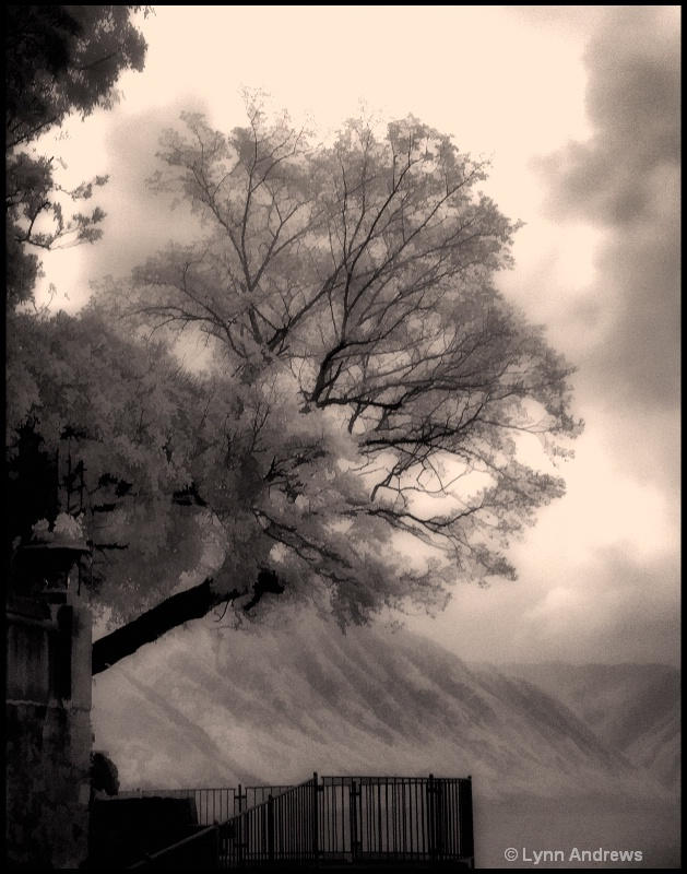 Varenna Walk, Lake Como, Italy (Toned Infrared)