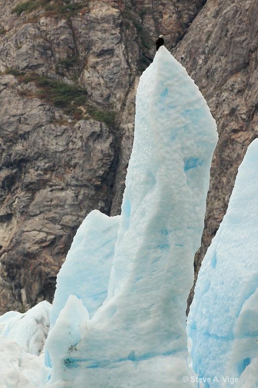2g8e2893-glacier bay-16-17-3-s