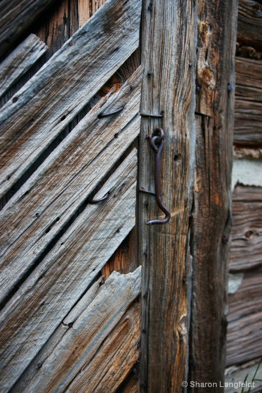Latch on the Old Shed
