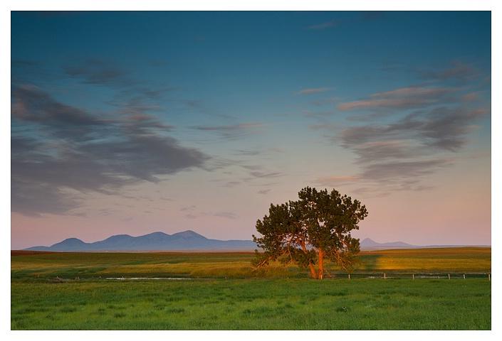 Southern Alberta & Sweet Grass Hills