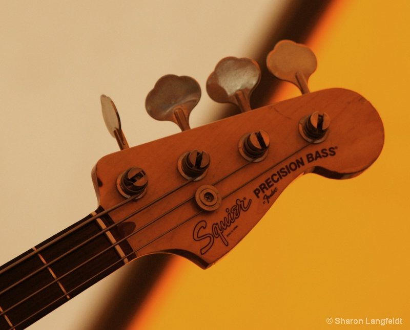 Head of the Bass