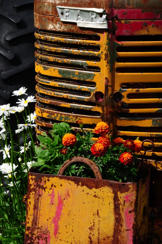 Tractor Flowers