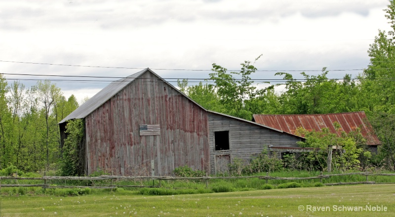 Mogan-Larrow Farm  So. Hero VT