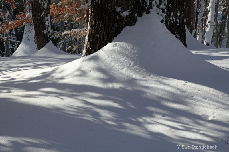 Snow with Shadows
