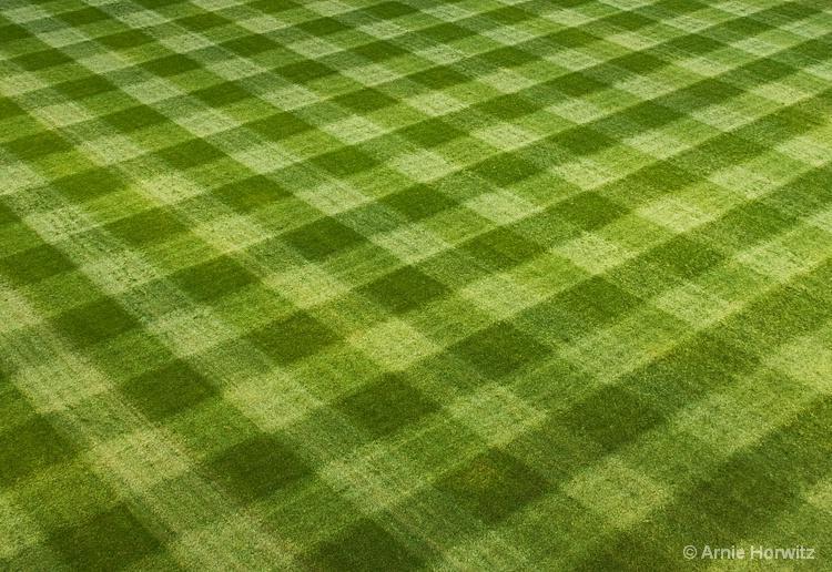 Patterns in Green - II