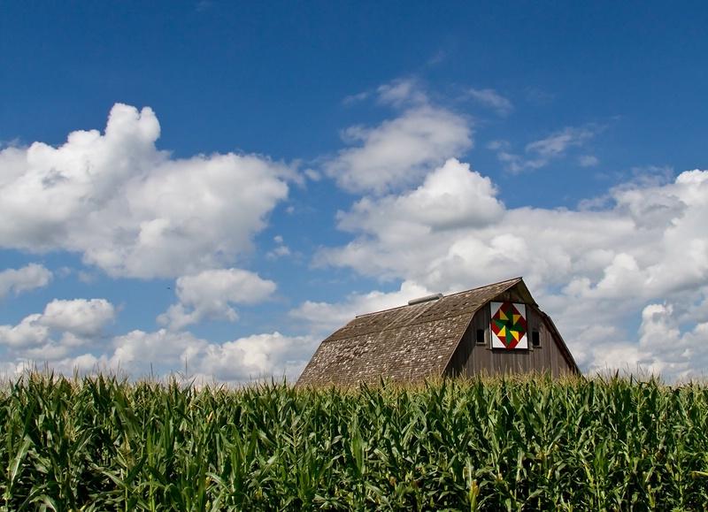 In the Corn II