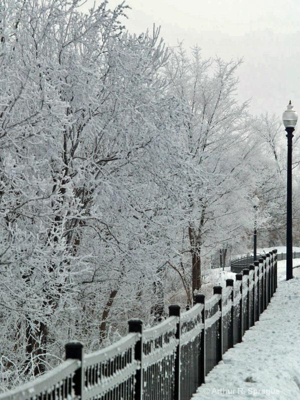 Frosty Blvd.