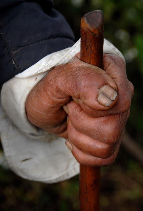 Grandfather's Hand