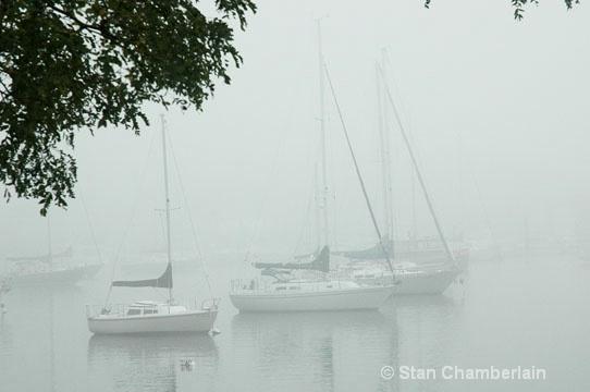 Barrington River Boats in Fog