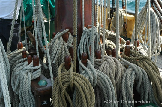 Belayed Halyards