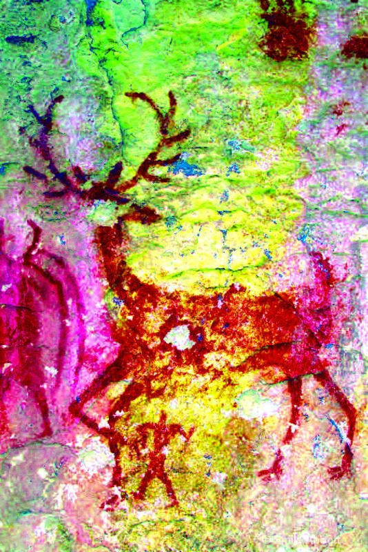 12 point buck head shot and heart shot crgb color.