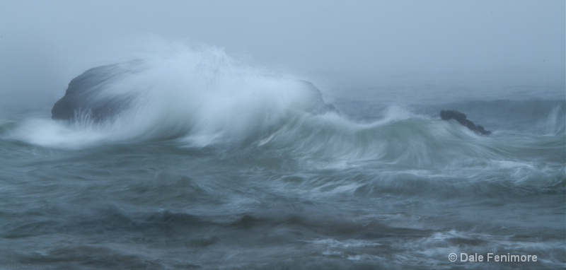 Wild Ocean Rock