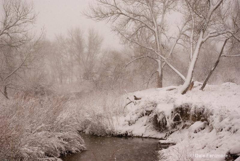 A Winter Scene 3