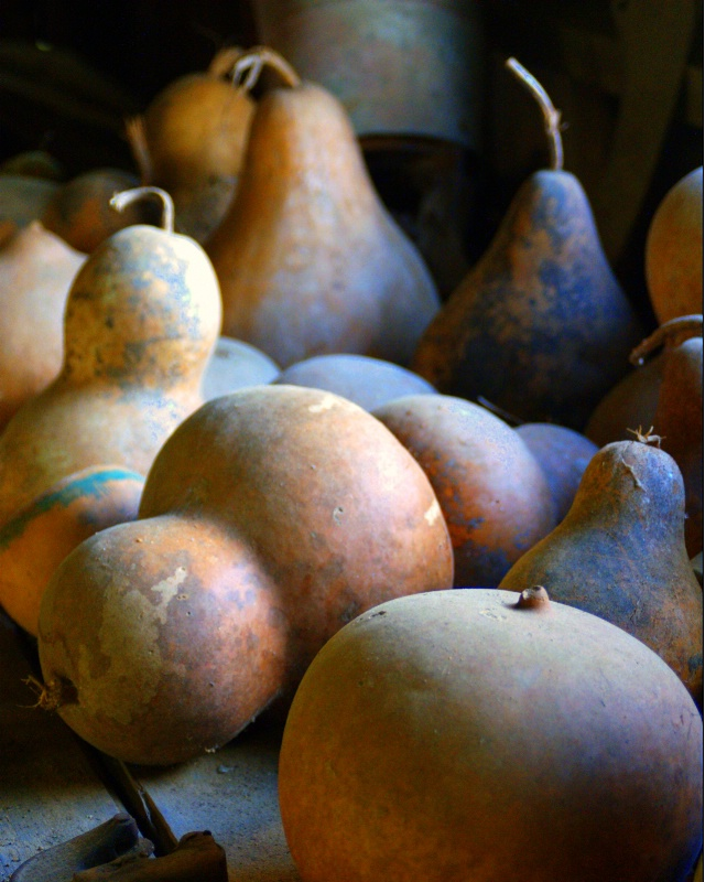 Bored of Gourds???