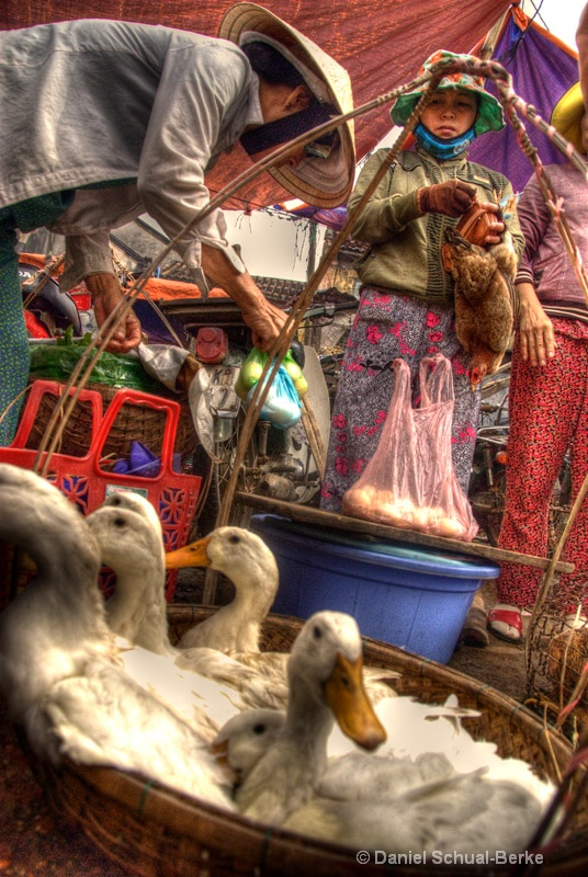 Poultry Market