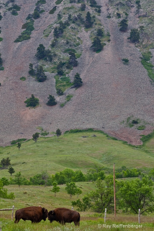 img 3348 Bear Butte
