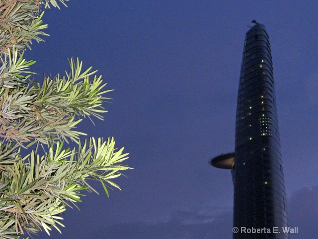 Viet Nam tallest building in Ho Chi Minh City.