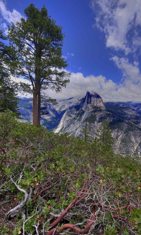 View of Half Dome from Glacier Point