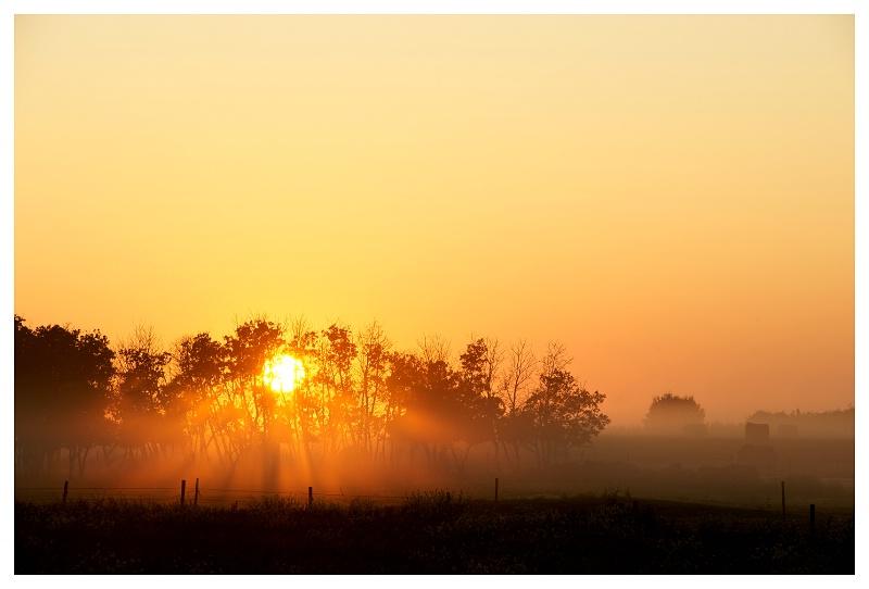 Sunrise near Waterous SK