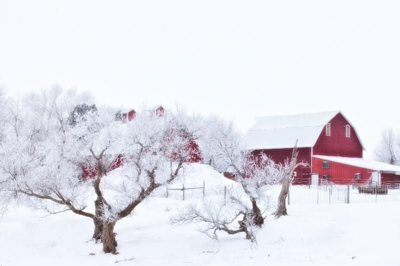 img 0351 Winter 2009