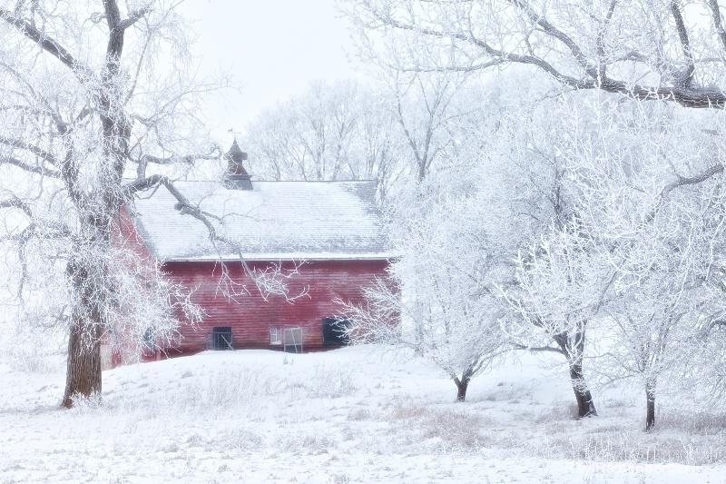img 0353 Winter 2009