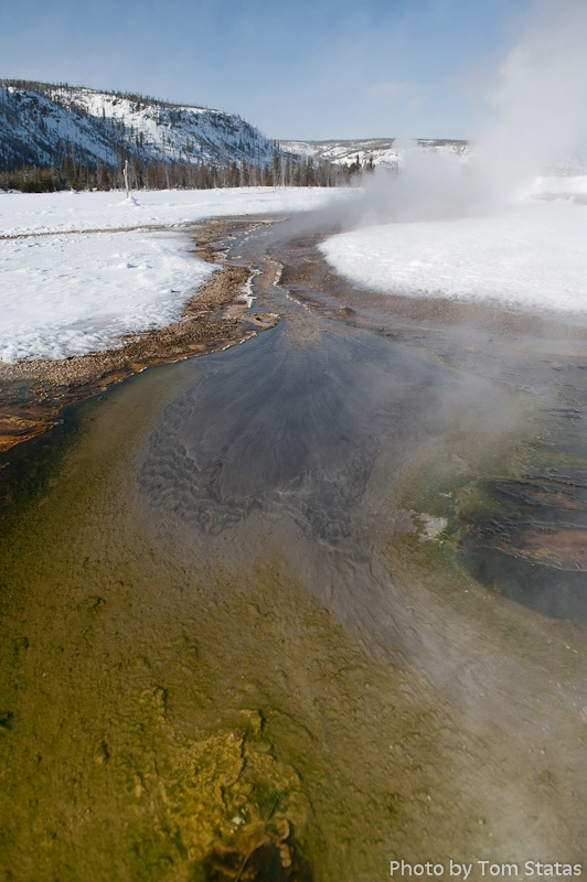 Yellowstone Color in Winter