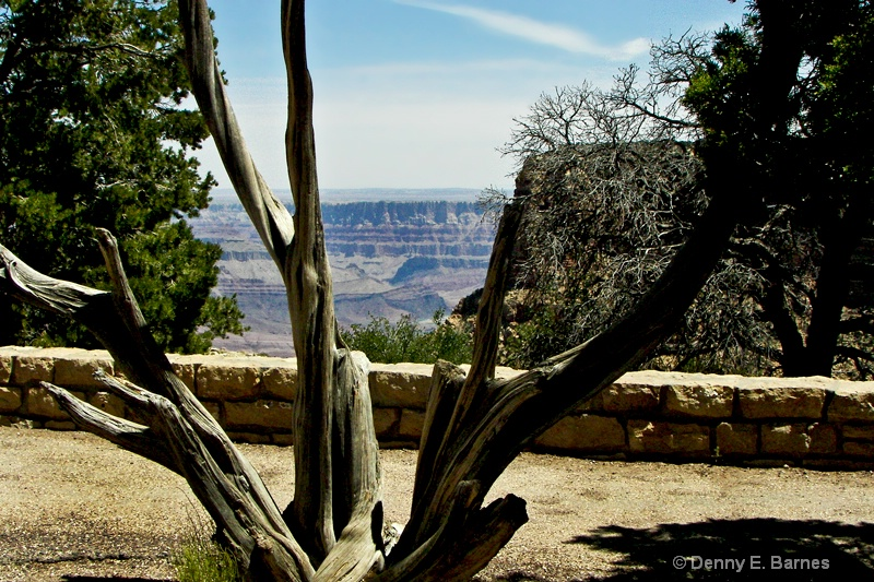 Grand Canyon 2006, AZ
