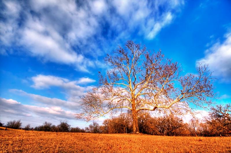 Sky - Blue