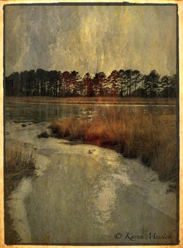 Kent Island Marsh