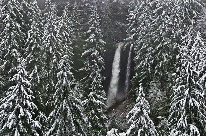 North Falls, Silver Falls SP