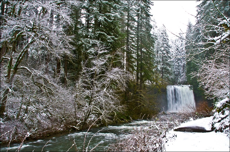 Upper North Falls, Silver Falls SP