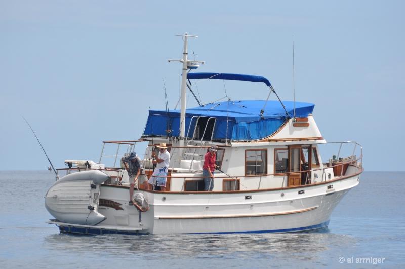 Fishing on the Matatua dsc 0424