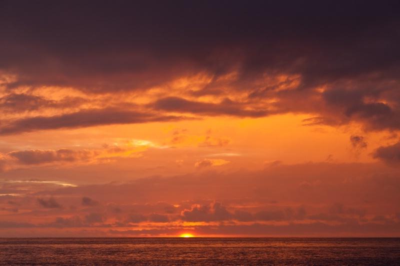 Galopagos Sunrise