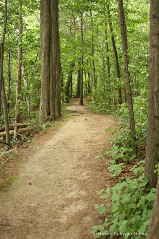 Trail to the beach..NiquetteBaySP, Colchester, VT