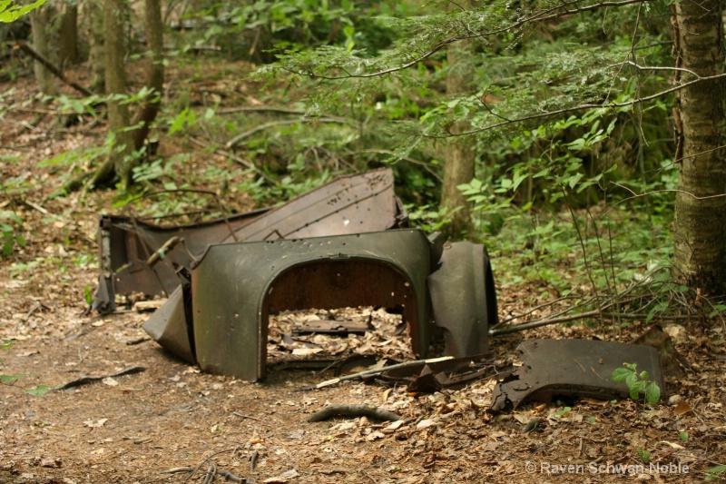 Hidden Surprise....NiquetteBaySP, Colchester, VT