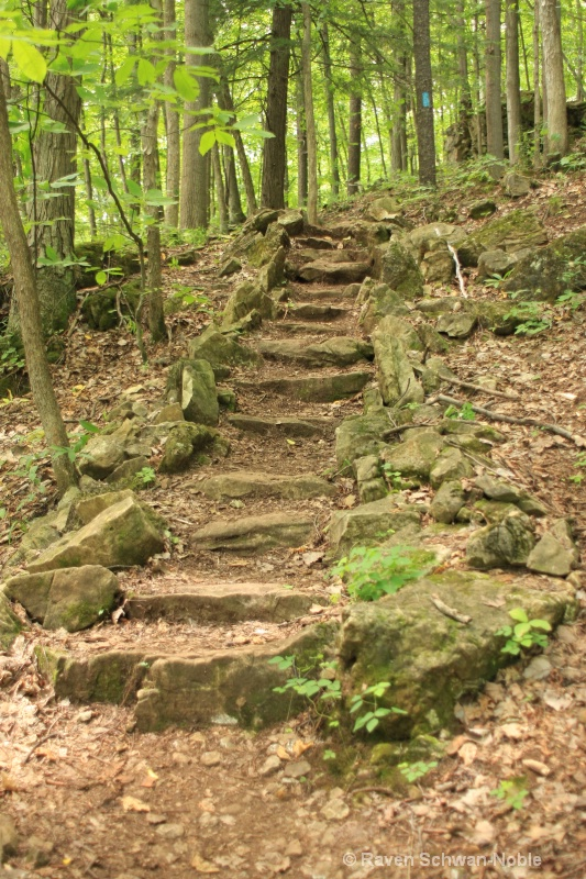 More Stairs...NiquetteBaySP, Colchester, Vermont