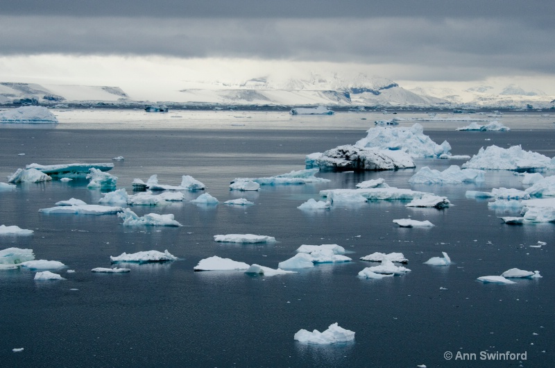 Iceberg Alley 3