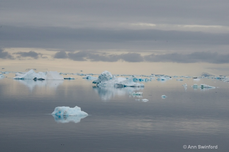 Iceberg Alley 1