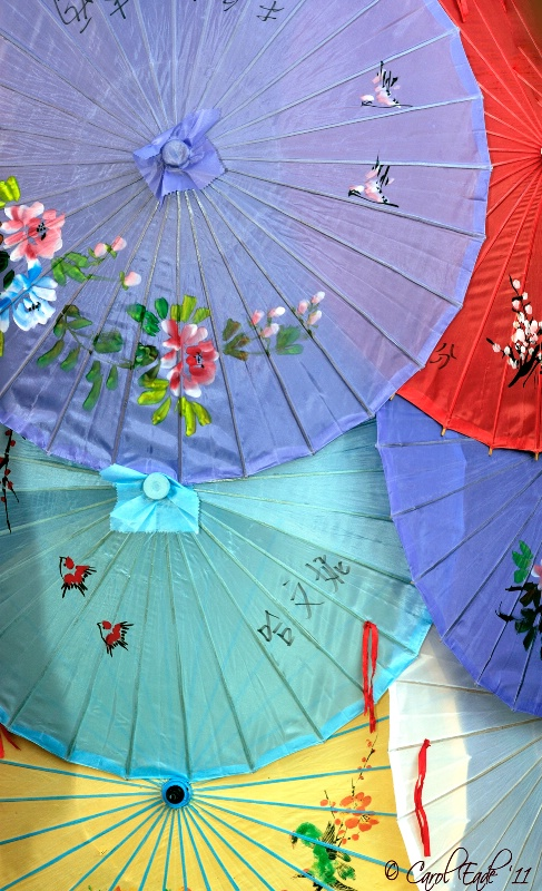 Painted Parasols