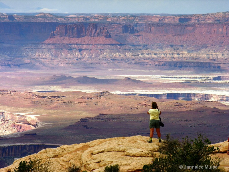 Canyonland overlook