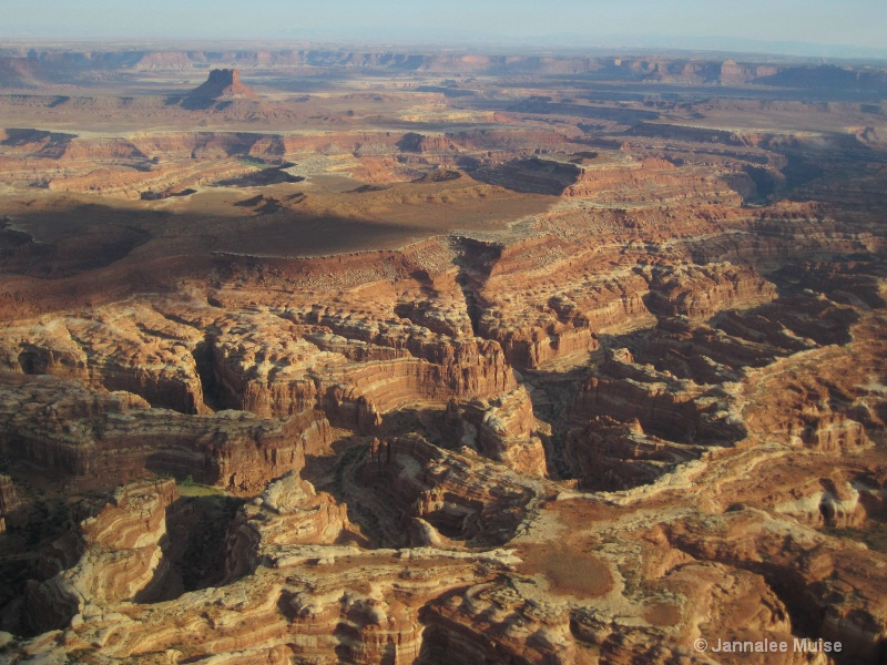 Canyonlands from above