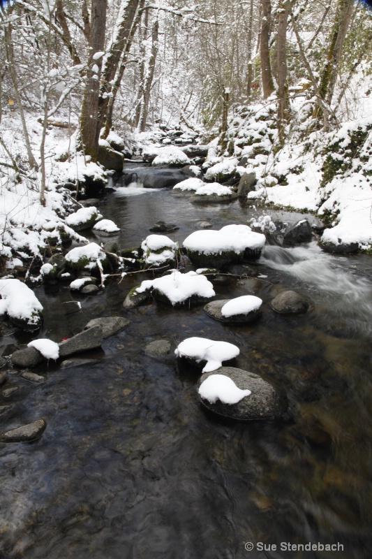 Snow Prints, Ashland Creek, Ashland, OR